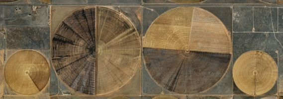 Ed Burtynsky, Pivot Irrigation #7, High Plains Texas Panhandle (2011)