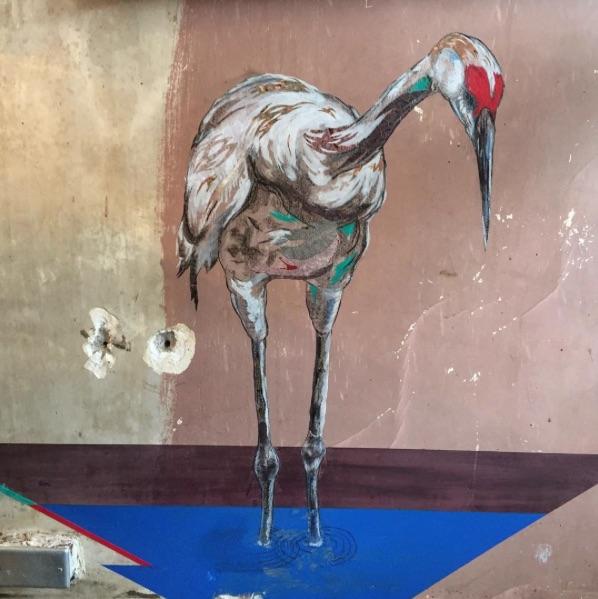 Greg Oberle Untitled, sandhill crane, 2016